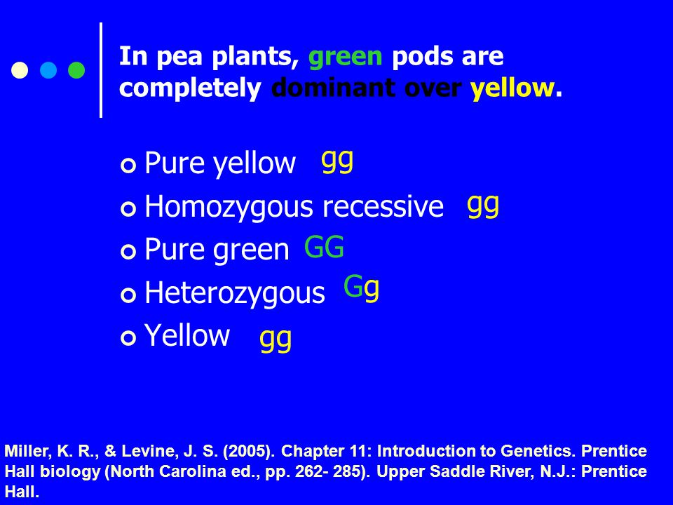 In pea plants, green pods are completely dominant over yellow.