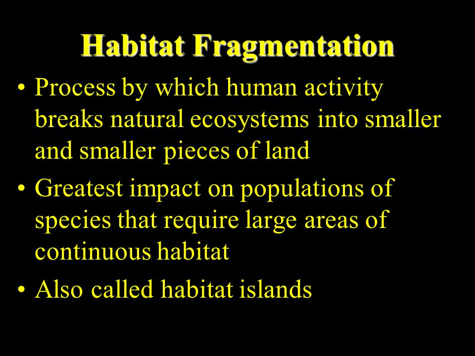 Conservation Biology Three PrinciplesThree Principles 1.Biodiversity and ecological integrity are useful and necessary to all life on earth and should not be reduced by human actions 2.Humans should not cause or hasten the premature extinction of populations and species or disrupt vital ecological processes 3.Best way to preserve earth's biodiversity and ecological integrity is to protect intact ecosystems that provide sufficient habitat