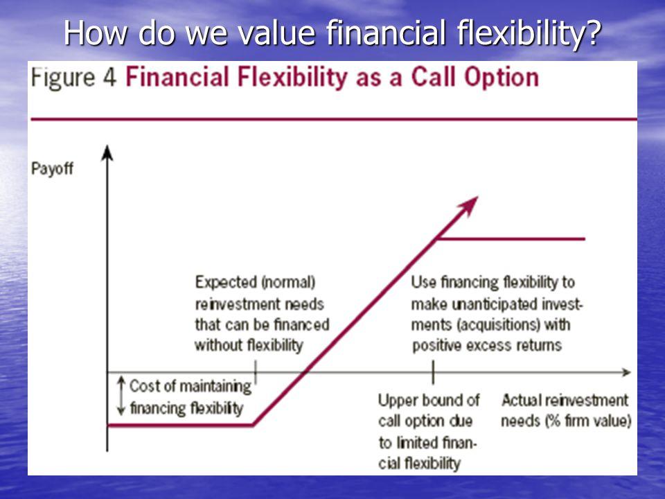 How do we value financial flexibility