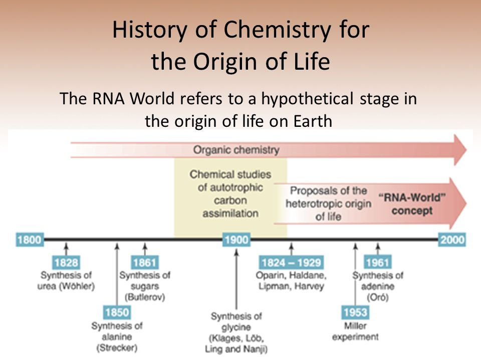 History of Chemistry for the Origin of Life The RNA World refers to a hypothetical stage in the origin of life on Earth