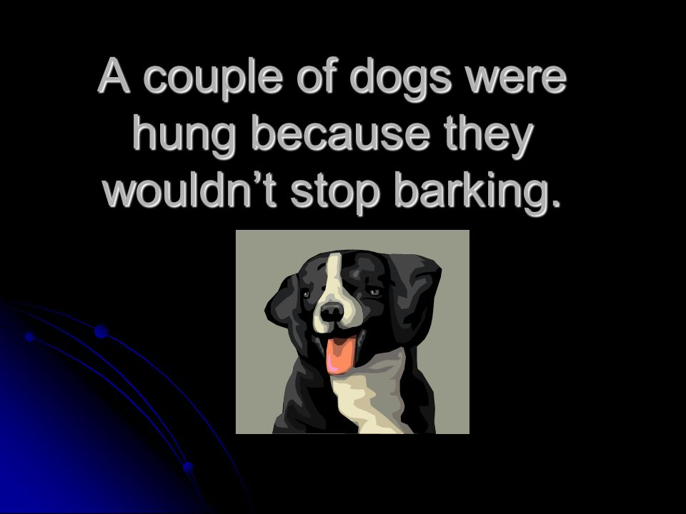 A couple of dogs were hung because they wouldn't stop barking.