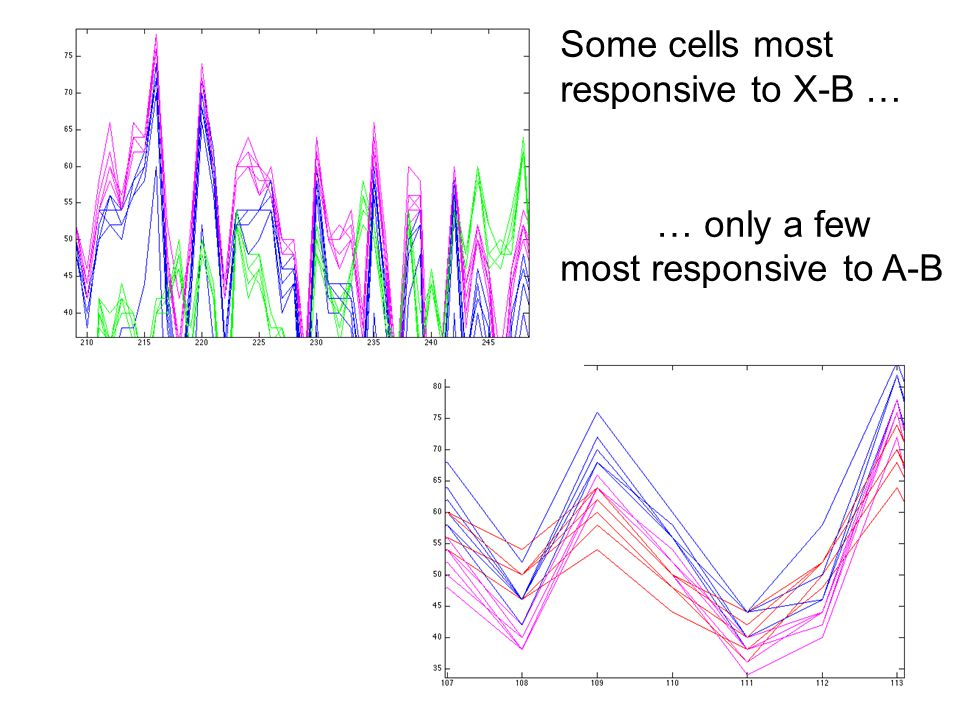Some cells most responsive to X-B … … only a few most responsive to A-B