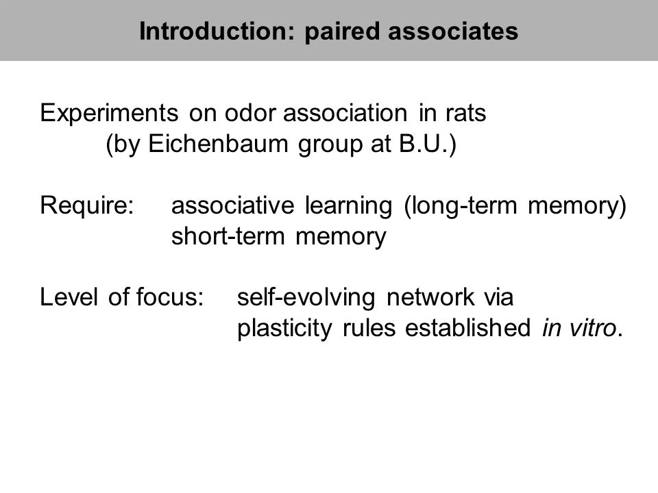Experiments on odor association in rats (by Eichenbaum group at B.U.) Require: associative learning (long-term memory) short-term memory Level of focu