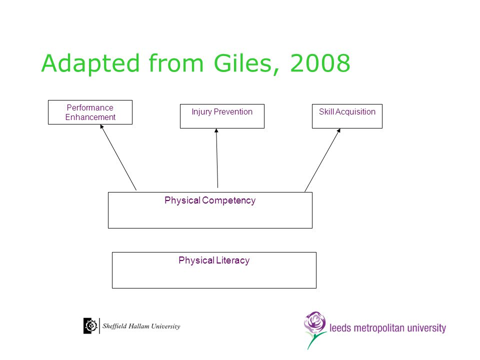 Adapted from Giles, 2008 Physical Literacy Physical Competency Performance Enhancement Injury PreventionSkill Acquisition