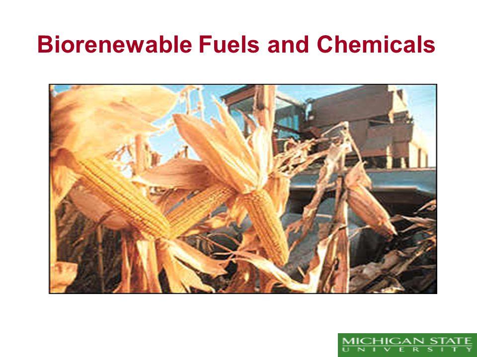 Biorenewable Fuels and Chemicals