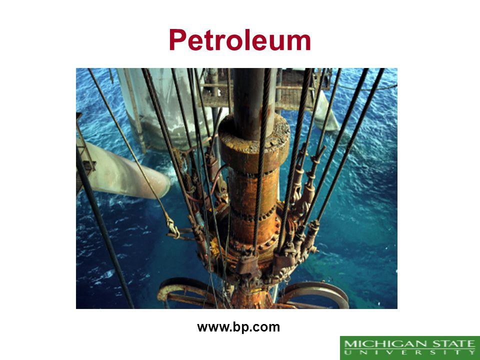 Petroleum www.bp.com
