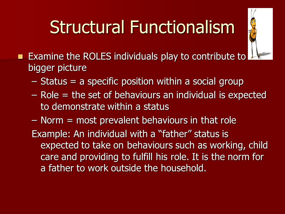 Structural Functionalism Examine the ROLES individuals play to contribute to the bigger picture Examine the ROLES individuals play to contribute to th
