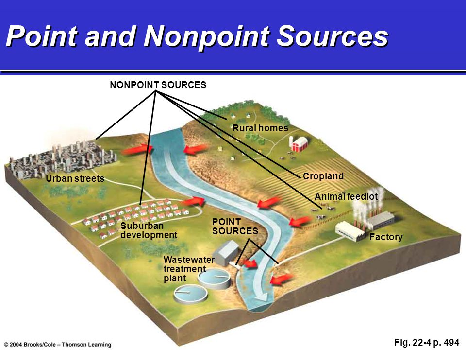 Point and Nonpoint Sources NONPOINT SOURCES Urban streets Suburban development Wastewater treatment plant Rural homes Cropland Factory Animal feedlot
