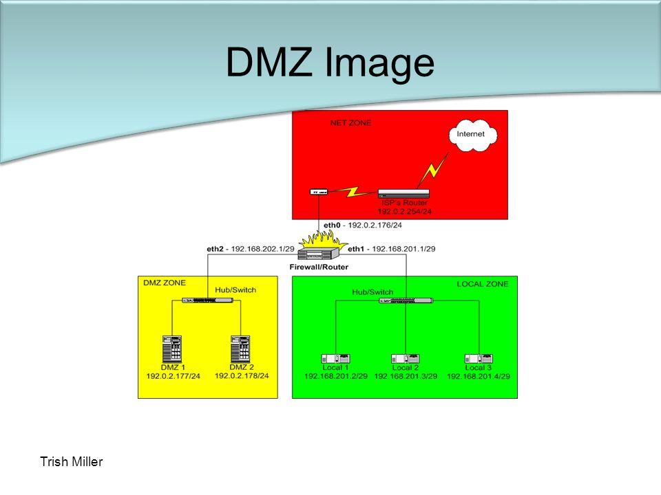 Trish Miller DMZ Image