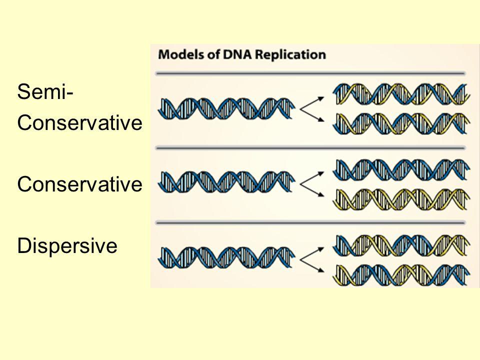 Semi- Conservative Dispersive
