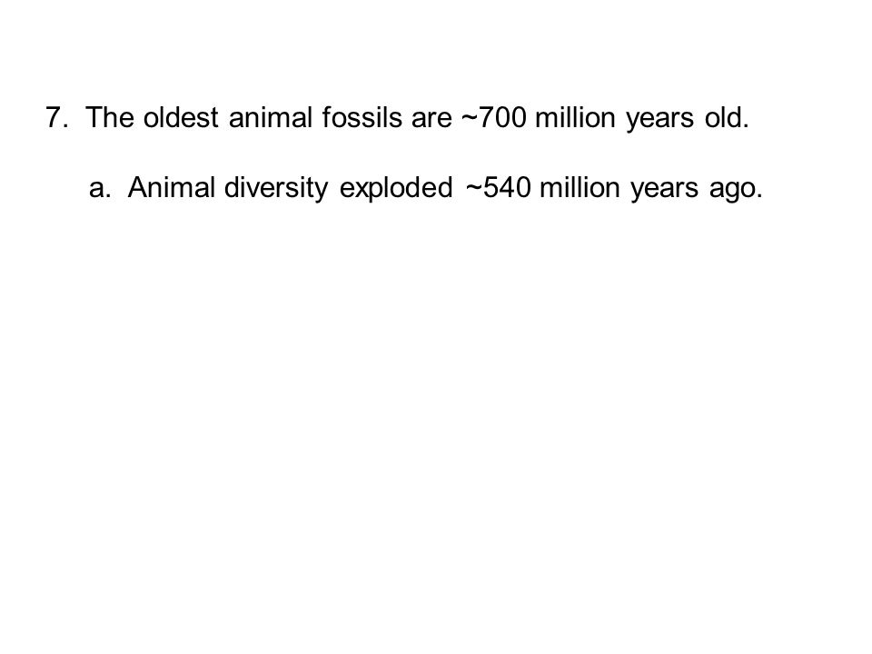7. The oldest animal fossils are ~700 million years old. a. Animal diversity exploded ~540 million years ago.