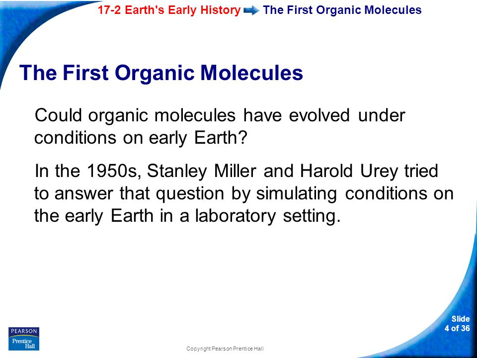 17-2 Earth s Early History Slide 15 of 36 Copyright Pearson Prentice Hall Origin of Eukaryotic Cells Endosymbiotic Theory Mitochondrion Aerobic bacteria Nuclear envelope evolving Ancient Prokaryotes Plants and plantlike protists Primitive Photosynthetic Eukaryote Primitive Aerobic Eukaryote Ancient Anaerobic Prokaryote Chloroplast Animals, fungi, and non-plantlike protists Photosynthetic bacteria