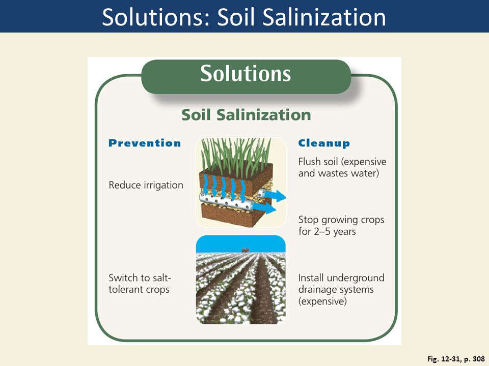 Solutions: Soil Salinization Fig. 12-31, p. 308
