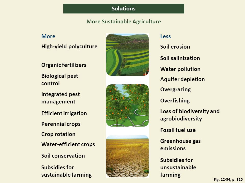 Solutions More Sustainable Agriculture MoreLess High-yield polyculture Soil erosion Organic fertilizers Biological pest control Water pollution Soil s