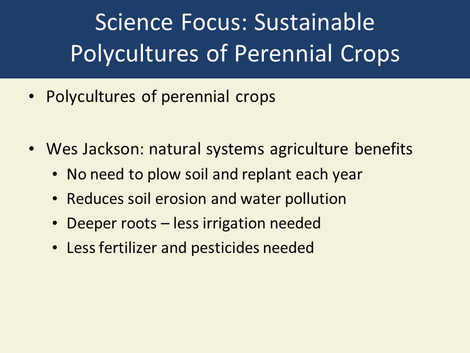 Science Focus: Sustainable Polycultures of Perennial Crops Polycultures of perennial crops Wes Jackson: natural systems agriculture benefits No need t