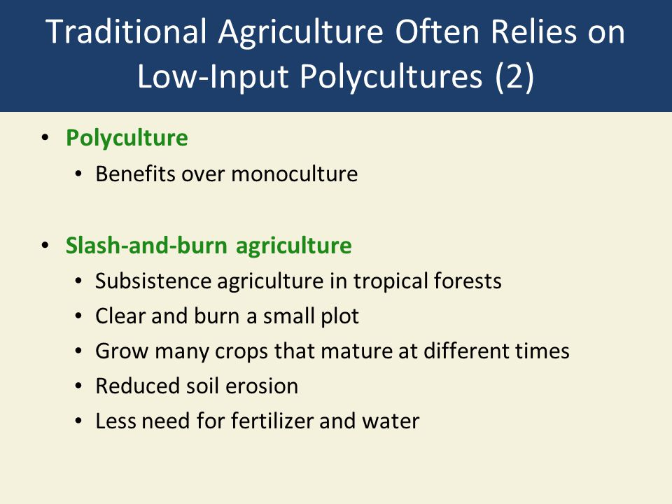 Traditional Agriculture Often Relies on Low-Input Polycultures (2) Polyculture Benefits over monoculture Slash-and-burn agriculture Subsistence agricu