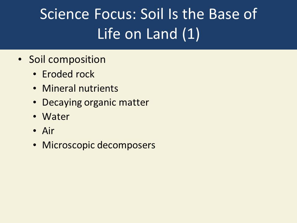 Science Focus: Soil Is the Base of Life on Land (1) Soil composition Eroded rock Mineral nutrients Decaying organic matter Water Air Microscopic decom