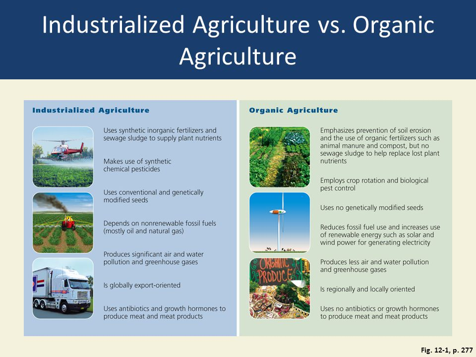 Shift to More Sustainable Agriculture (2) Strategies for more sustainable agriculture Research on organic agriculture with human nutrition in mind Show farmers how organic agricultural systems work Subsidies and foreign aid Training programs; college curricula Encourage hydroponics Greater use of alternative energy