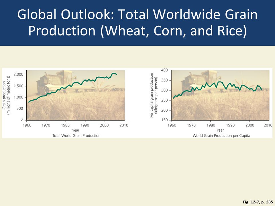 Global Outlook: Total Worldwide Grain Production (Wheat, Corn, and Rice) Fig. 12-7, p. 285