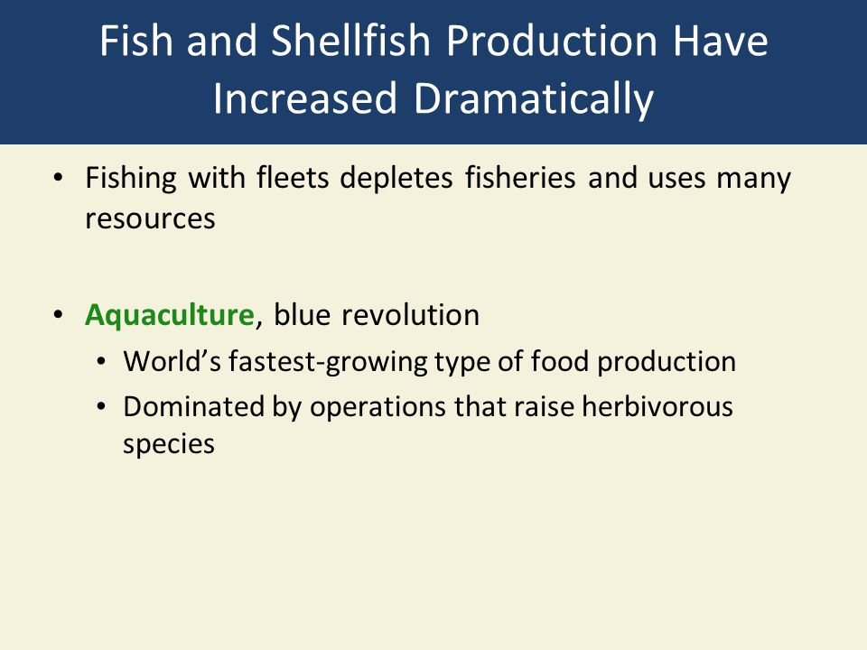 Fish and Shellfish Production Have Increased Dramatically Fishing with fleets depletes fisheries and uses many resources Aquaculture, blue revolution