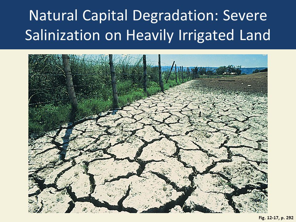 Natural Capital Degradation: Severe Salinization on Heavily Irrigated Land Fig. 12-17, p. 292