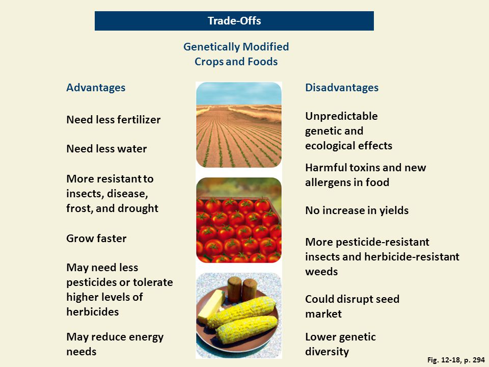 Trade-Offs Genetically Modified Crops and Foods AdvantagesDisadvantages Need less fertilizer Unpredictable genetic and ecological effects Need less wa