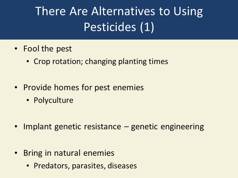 There Are Alternatives to Using Pesticides (1) Fool the pest Crop rotation; changing planting times Provide homes for pest enemies Polyculture Implant