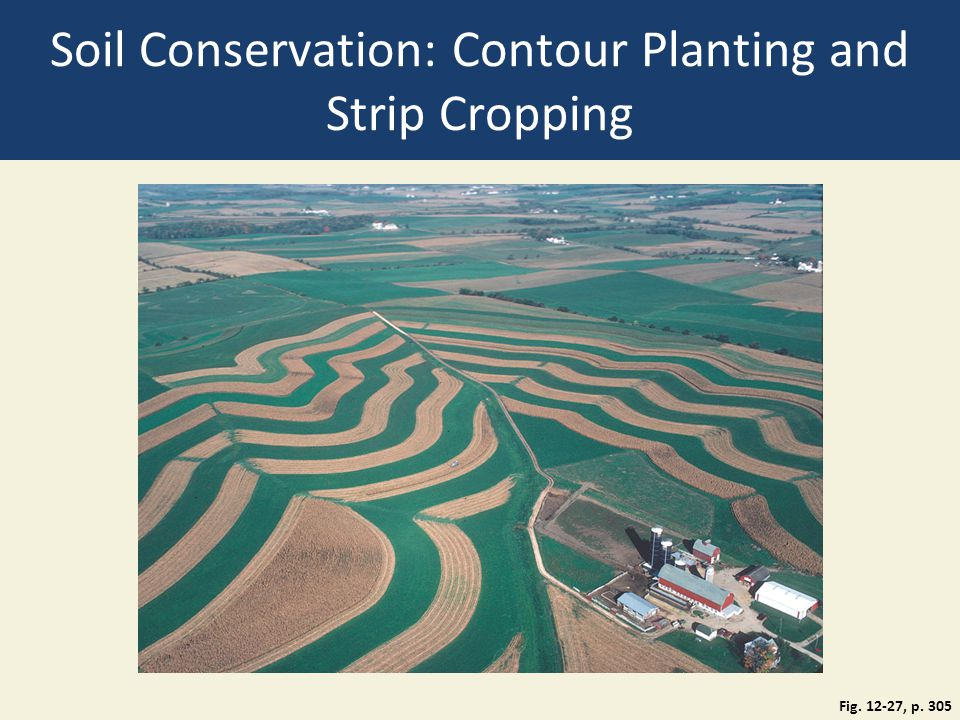 Soil Conservation: Contour Planting and Strip Cropping Fig. 12-27, p. 305