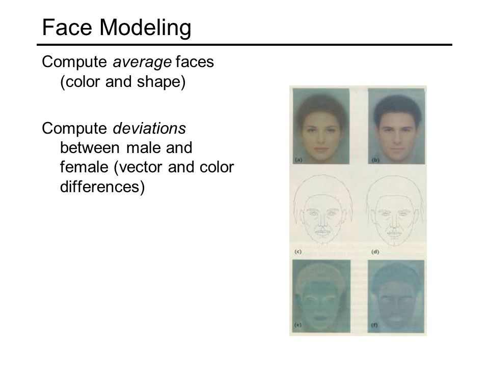 Face Modeling Compute average faces (color and shape) Compute deviations between male and female (vector and color differences)