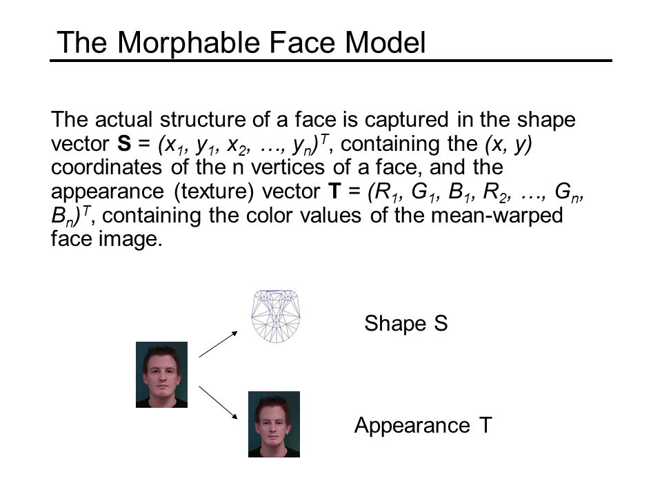 The Morphable Face Model The actual structure of a face is captured in the shape vector S = (x 1, y 1, x 2, …, y n ) T, containing the (x, y) coordina