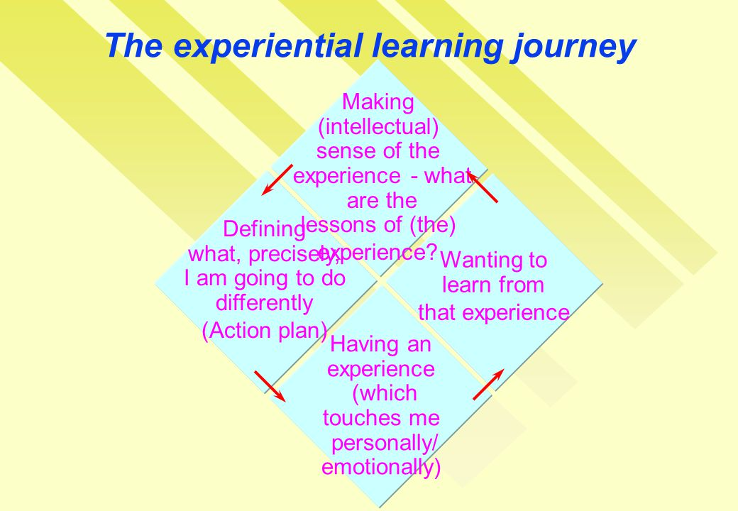 The experiential learning journey Making (intellectual) sense of the experience - what are the lessons of (the) experience.