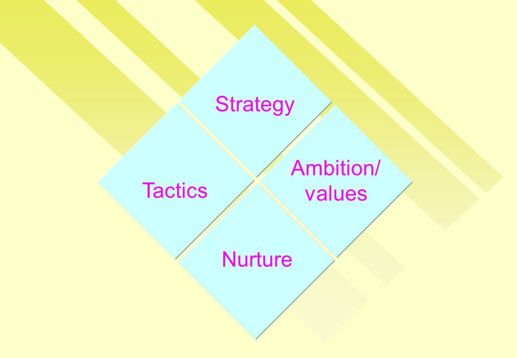 Strategy Tactics Nurture Ambition/ values