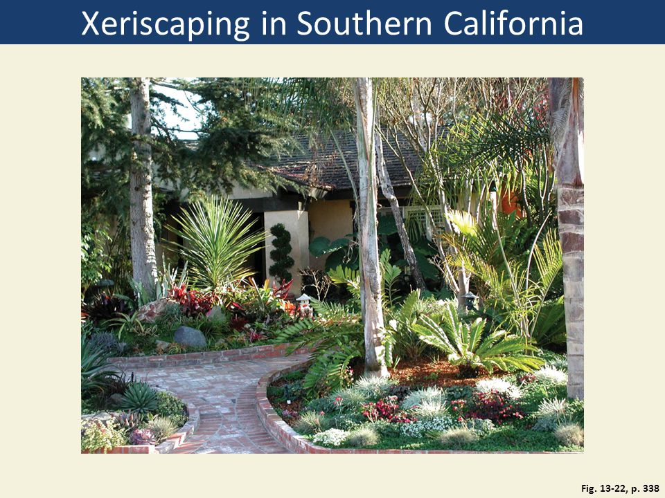Xeriscaping in Southern California Fig. 13-22, p. 338