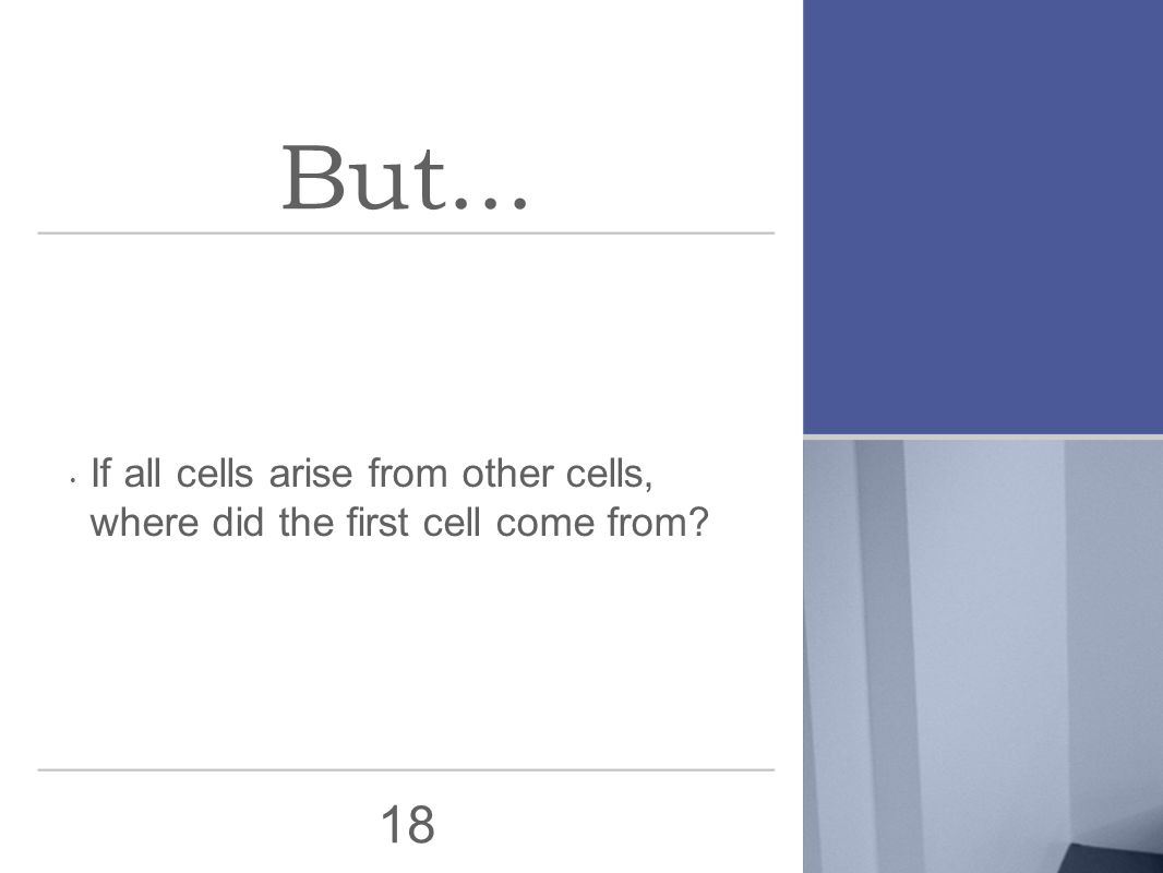 18 But... If all cells arise from other cells, where did the first cell come from?