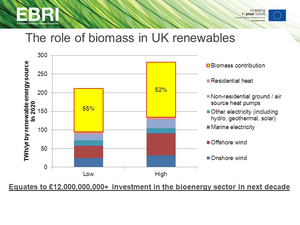 The role of biomass in UK renewables Equates to £12,000,000,000+ investment in the bioenergy sector in next decade