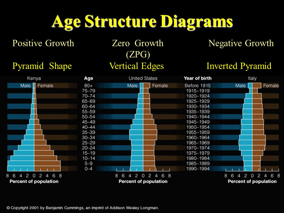 5. Age Structure The age structure of a population is usually shown graphically The population is usually divided up into prereproductives, reproducti
