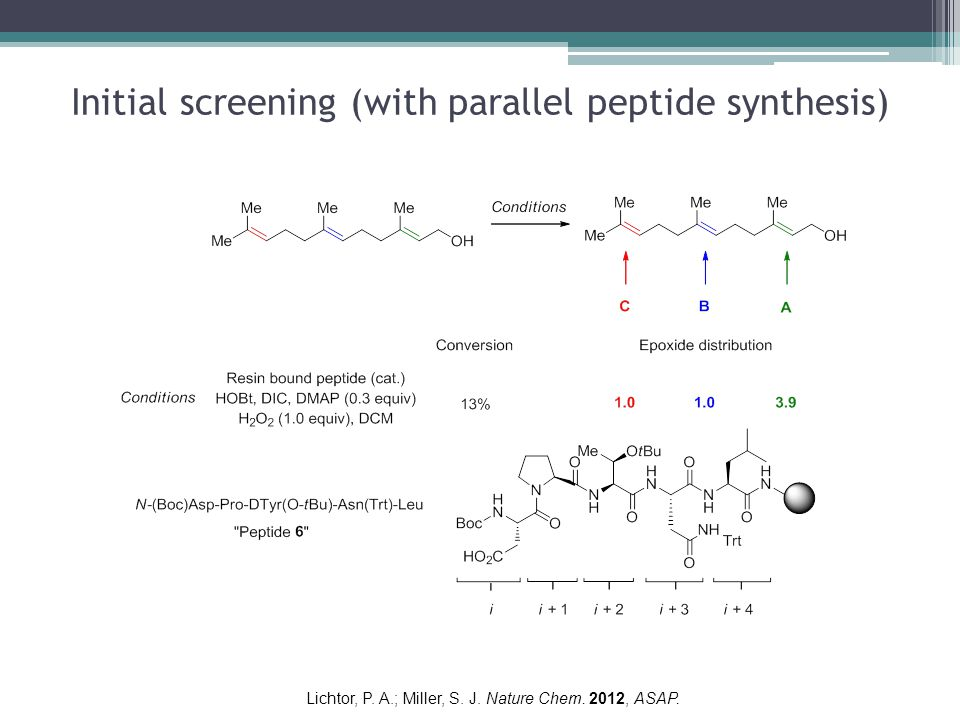 Initial screening (with parallel peptide synthesis) Lichtor, P.
