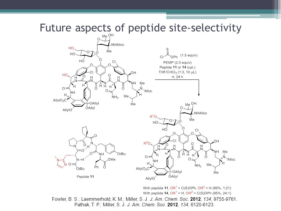 Future aspects of peptide site-selectivity Fowler, B.