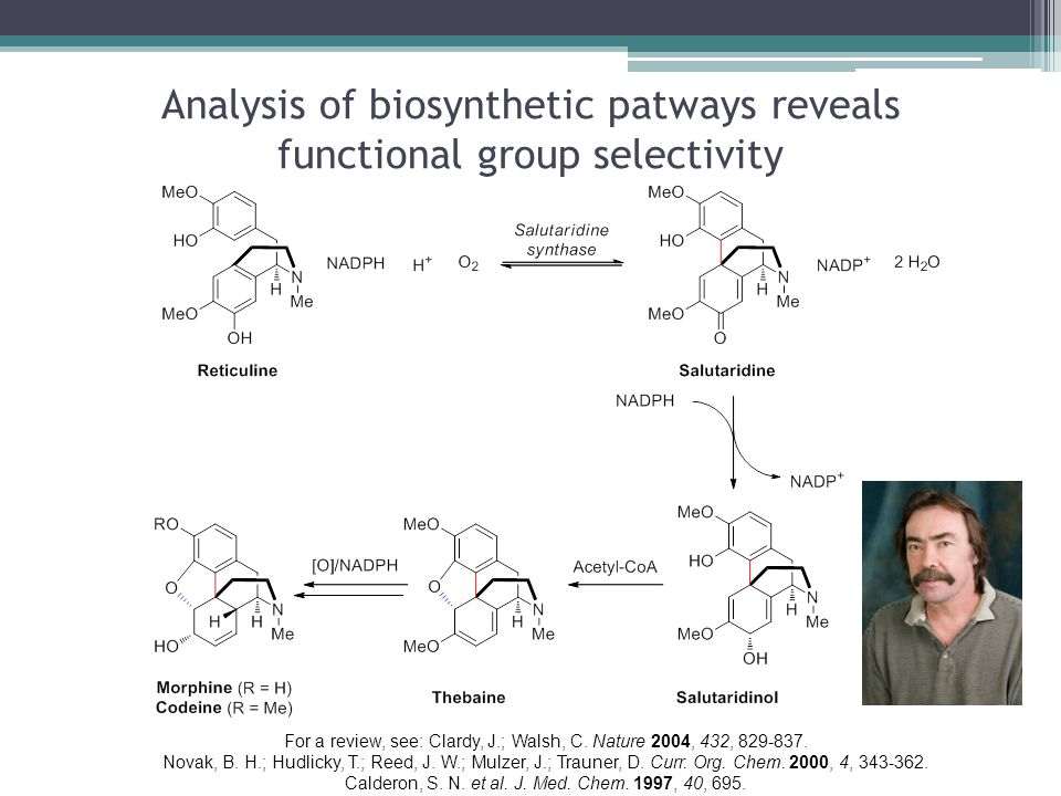 Analysis of biosynthetic patways reveals functional group selectivity For a review, see: Clardy, J.; Walsh, C.