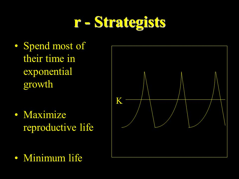 r - Strategists Spend most of their time in exponential growth Maximize reproductive life Minimum life K