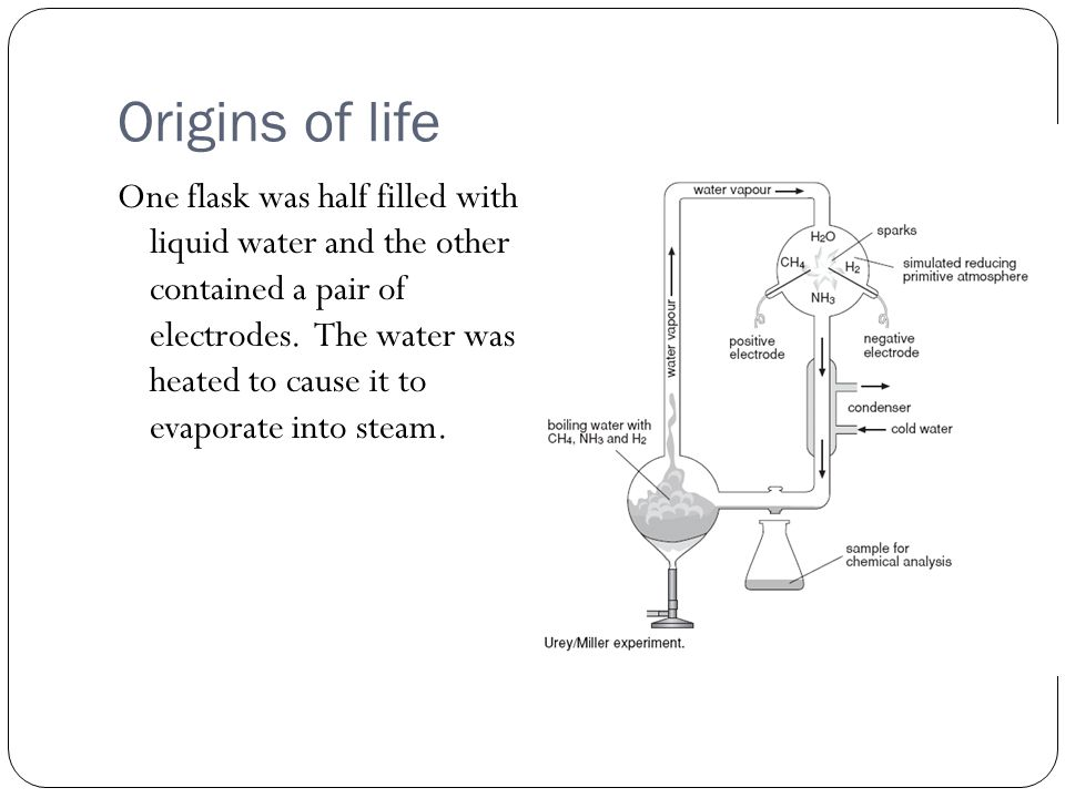 Origins of life One flask was half filled with liquid water and the other contained a pair of electrodes.