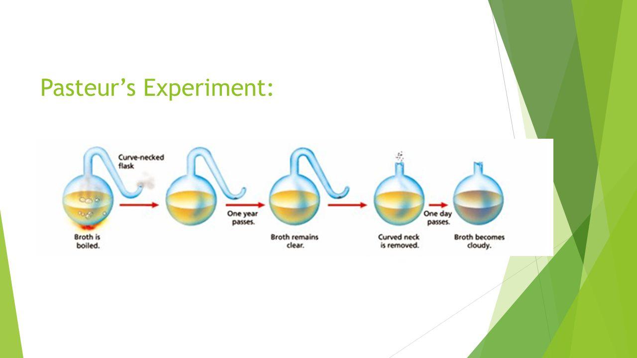 Pasteur's Experiment: