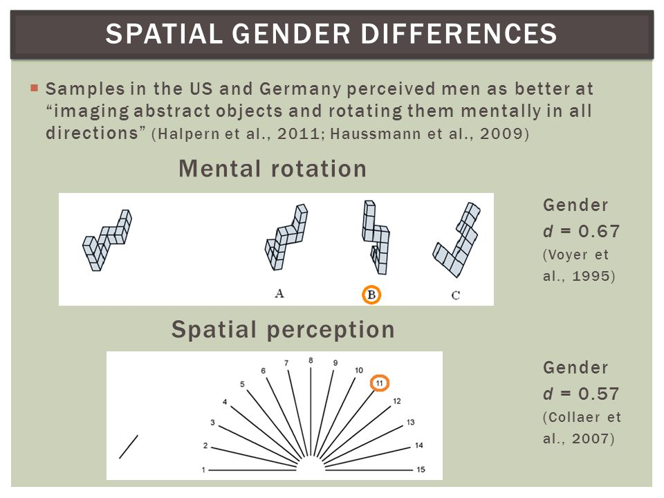 SPATIAL GENDER DIFFERENCES  Samples in the US and Germany perceived men as better at imaging abstract objects and rotating them mentally in all directions (Halpern et al., 2011; Haussmann et al., 2009) Mental rotation Gender d = 0.67 (Voyer et al., 1995) Spatial perception Gender d = 0.57 (Collaer et al., 2007)