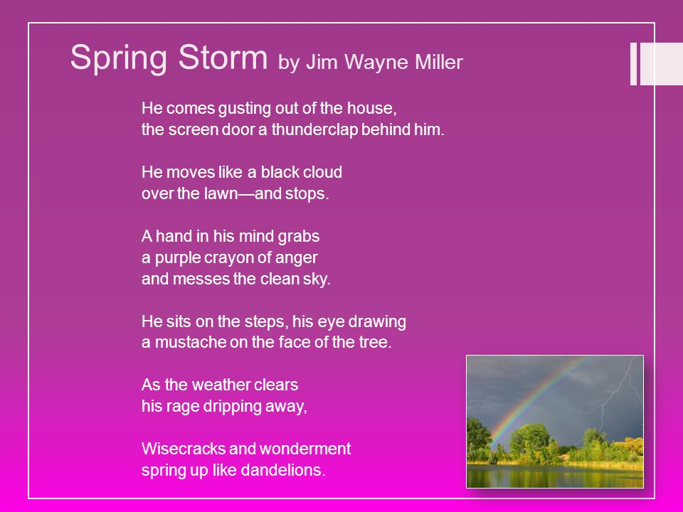Spring Storm by Jim Wayne Miller He comes gusting out of the house, the screen door a thunderclap behind him. He moves like a black cloud over the law