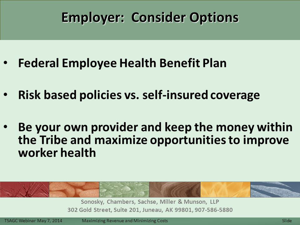 Employer: Consider Options Employer: Consider Options Federal Employee Health Benefit Plan Risk based policies vs.