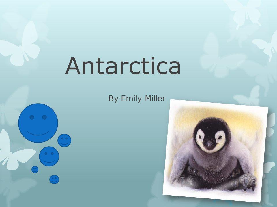Antarctica By Emily Miller