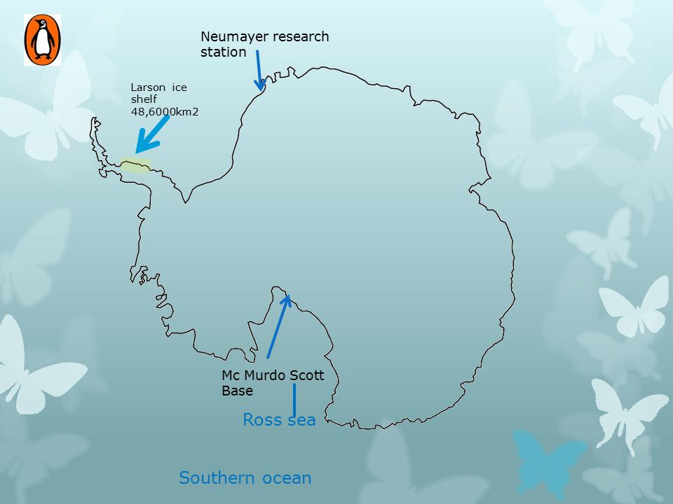 Larson ice shelf 48,6000km2 Neumayer research station Mc Murdo Scott Base Southern ocean Ross sea
