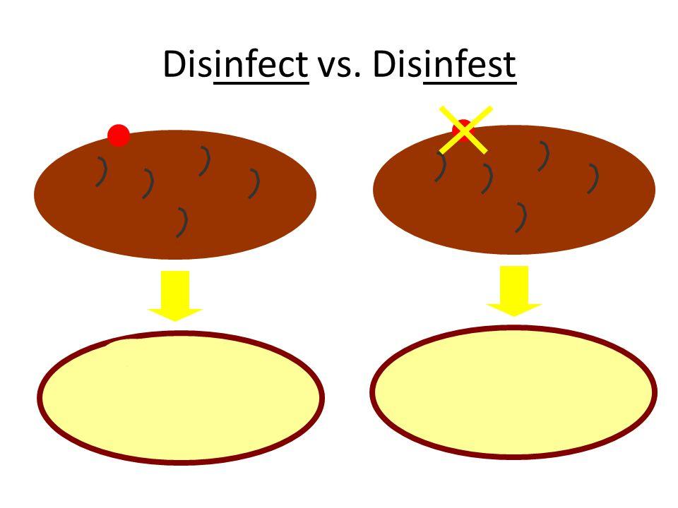 Disinfect vs. Disinfest
