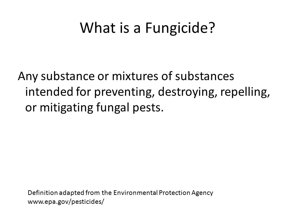 What is a Fungicide.