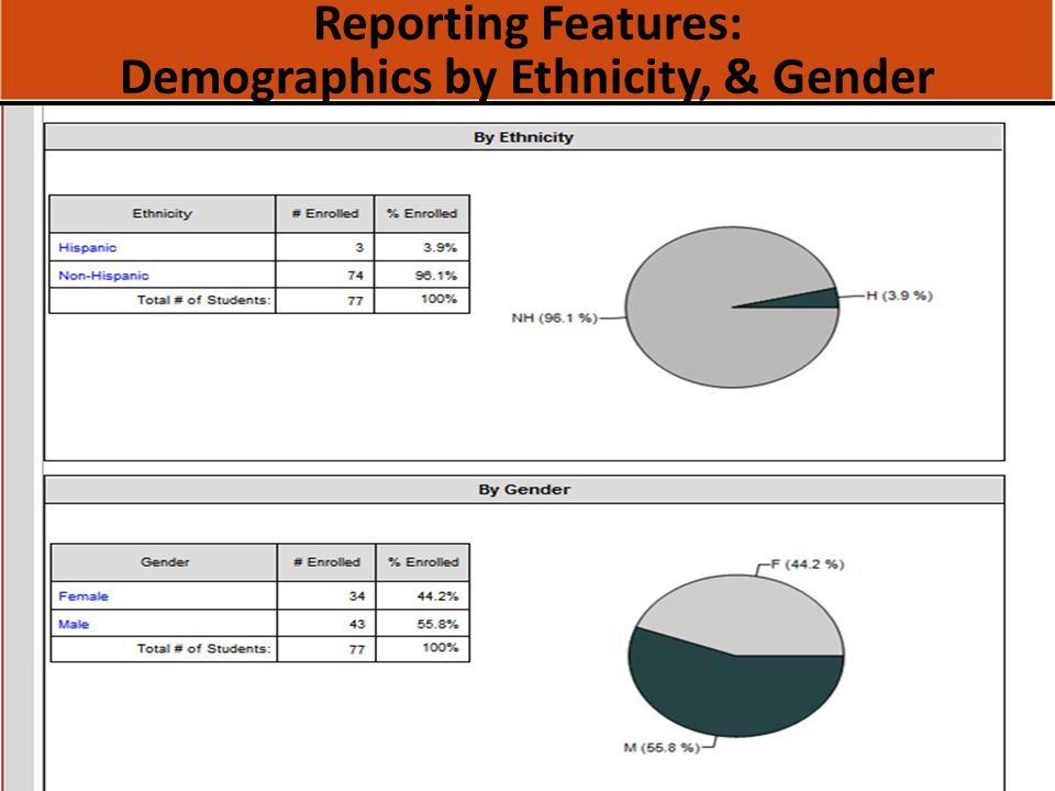 Reporting Features: Demographics by Ethnicity, & Gender